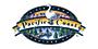 派赛菲特品牌logo